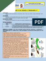 Actividad 18- Radial (03 e Agosto).pdf