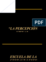 PERCEPCION 2007