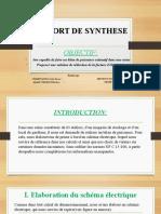 RAPPORT DE SYNTHESE