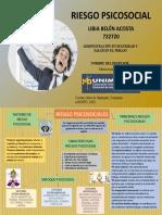 MAPA CONCEPTUAL RIESGO PSICOLOGICO LIBIA