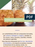 Carbohidratos y Lípidos - copia.pptx