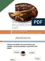 CALIDAD FÍSICA DEL CAFÉ ROBUSTA