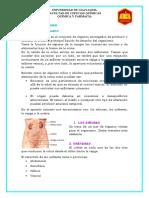 RESUMEN DE LA ORINA FISICO QUIMICO Y MICROSCOPICO