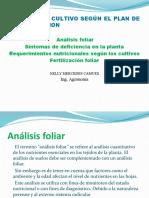 Análisis foliar (3)- documento tutora.pptx