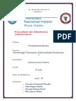 pdf-piroplasmosis-word