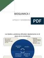 11.Lípidos y membranas difun.pptx