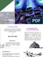 Biomimesis, sinergia y adaptabilidad