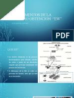 sesion 10 - Fundamentos de la electro obtención.pptx