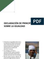 DAVID FERNÁNDEZ DECLARACIÓN DE PRINCIPIOS SOBRE LA IGUALDAD