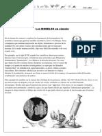 Actividad de Biología para 1er año - 5ta parte.pdf