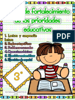 REMEDIAL 3 GRADO (1).pdf