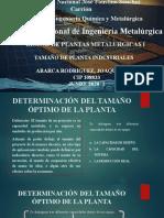 TAMAÑO DE PLANTAS INDUSTRIALES