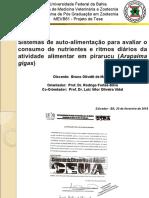 Apresentação Defesa de Tese - Bruno Olivetti de Mattos.ppt
