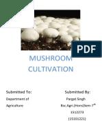 Training Report Mushroom Cultivation