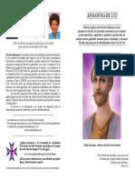 Armadura_de_Luz