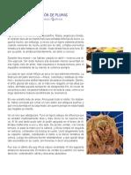 ALMOHADÓN DE PLUMAS-TALLER.pdf