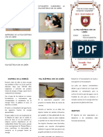 MODELO TRIPTICO.doc