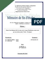 Mem Amar et Samir.pdf