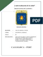 TAREA 2 DE LINGUISTICA (1)