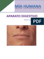 Cuadernillo 3  ( Digestivo)