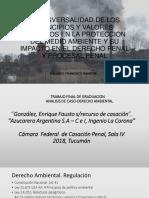 Transversalidad de los Principios y Valores Jurídicos en la protección del medio ambiente y su impacto en el derecho penal y procesal penal.