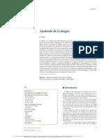 Anatomie de la langue.pdf
