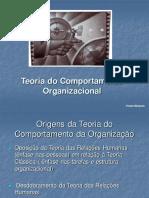 Teoria do Comportamento Organizacional