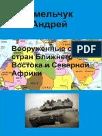 Вооруженные Силы Стран Ближнего Востока и Северной Африки