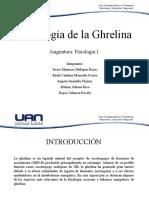 Fisiología De La Ghrelina
