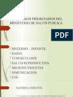 278429529-Programas-Prioritarios-Del-Ministerio-de-Salud-Publica.pptx