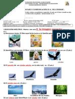 Pb. El Condor 2019 (2019_05_28 20_47_45 UTC)