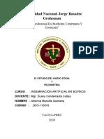 EL ESTUDIO DEL HUESO COXAL Y PELVIMETRIA 2015-110019 mvz