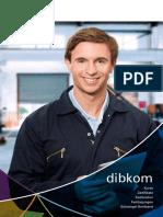 180525_dibkomSK_Web_small.pdf