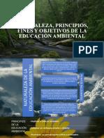 NATURALEZA, PRINCIPIOS, FINES Y OBJETIVOS DE