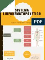 sistema linfohematopoyetico
