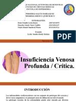INSUFICIENCIA VENOSA,FAM III