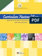 0-CNB_de_Formacion_Docente.pdf