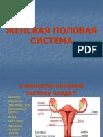 Презантация с сайта www.skachat-prezentaciju-besplatno.ru - 01300202.pptx