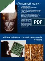 Презантация с сайта www.skachat-prezentaciju-besplatno.ru - 01300201