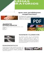 Infografía problemas respiratorios.pdf