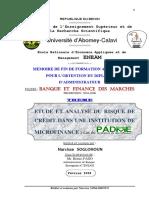 e13e64c4b38cff8ec098750b582ecbbb-etude-analyse-risque-credit-microfinance