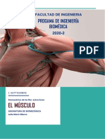 Biomecánica  (3)
