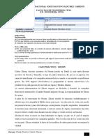 U1_3_GE1_Caso practico_Ghosn