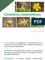 Clase 2. Caracteres taxonomicos
