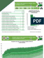 informe_17MY2020 (1).pdf