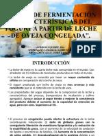 PERFIL DE FERMENTACIÓN Y CARACTERÍSTICAS DEL YOGURT