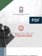 UNIDAD IX - LOS DERECHOS SUBJETIVOS - DERECHOS REALES.pdf
