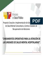 01.Lineamientos Operativos USMH