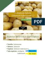 Cultura da batata.pdf