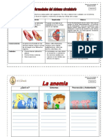 Enfermedades-y-cuidados-del-sistema-circulatorio